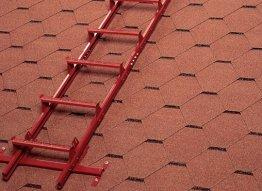 Sieninės ir stoginės kopėtėlės